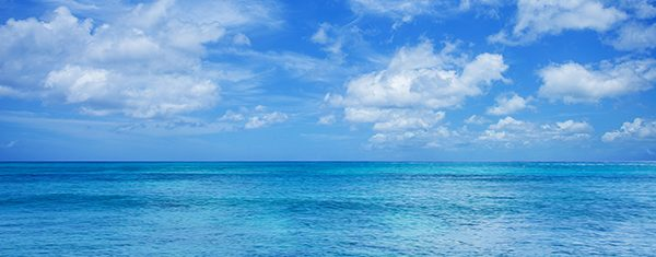 About: Blue Skies, Blue Oceans